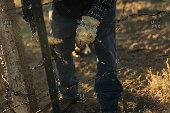 Rancher fixing barbed wire fence