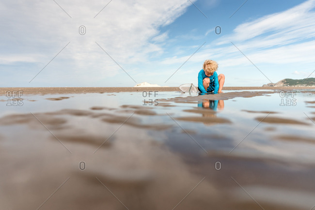 Young blonde boy playing with at beach with net, Hawke's Bay, New Zealand