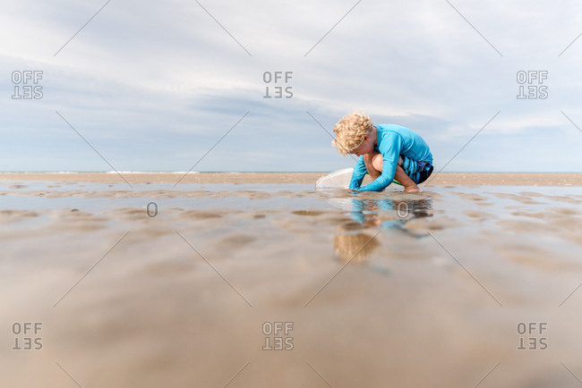 Blonde curly haired boy playing with at beach with net, Hawke's Bay, New Zealand