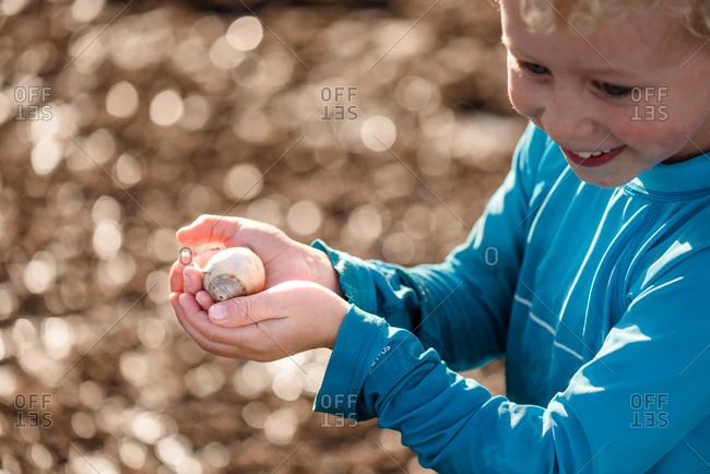 Boy holding snail found on the beach