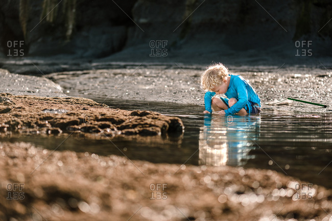 Young blonde boy looking into tide pool at beach, Hawke's Bay, New Zealand