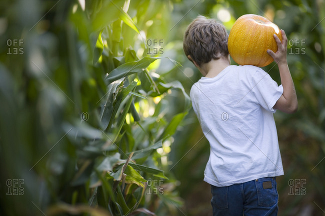 Young boy carrying a pumpkin.