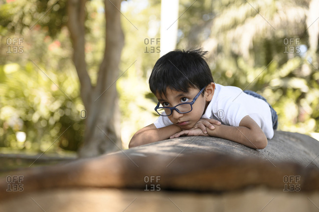 Boy with glasses lying on a tree in nature