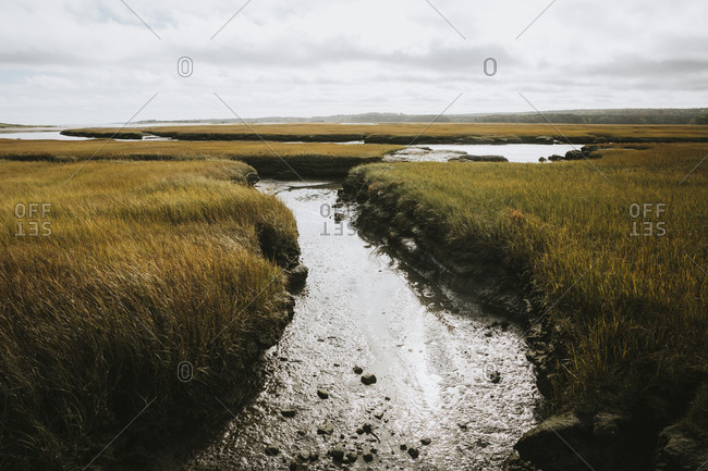 View of salt water marshes