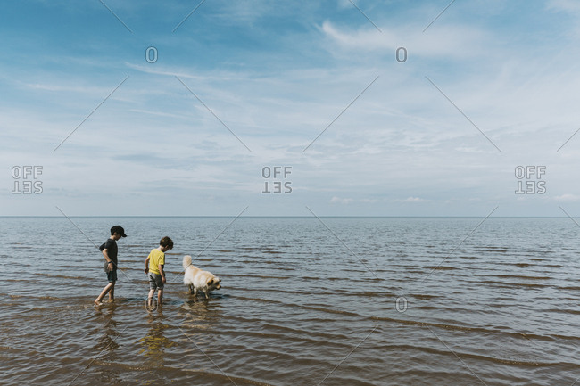 Two brothers and dog paddling in ocean against a cloudy sky