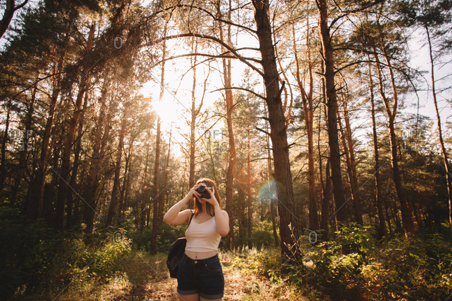 Woman photographing with camera in forest during summer