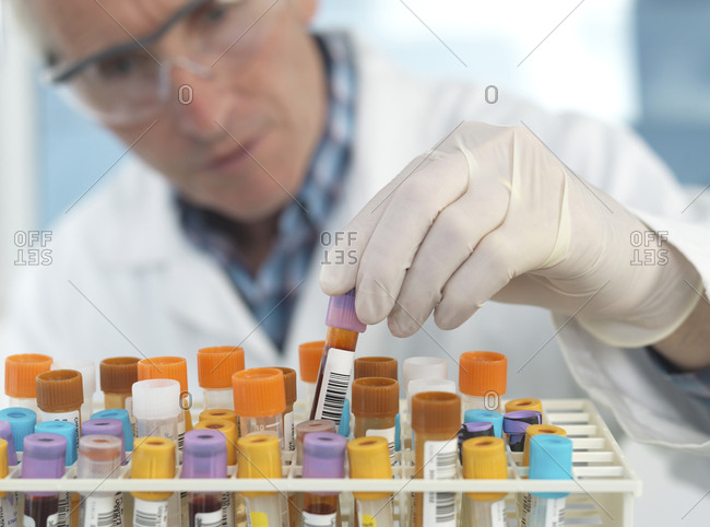 Medical technician checking blood samples in lab