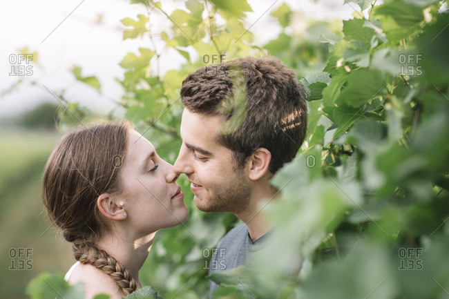 Young couple in love in the vineyards