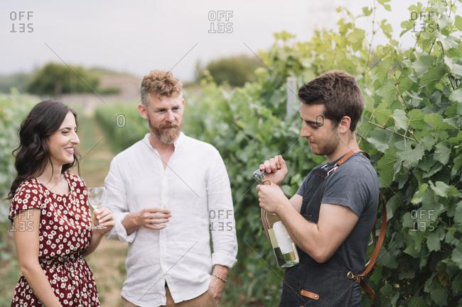 Sommelier opening wine bottle for customers in the vineyard