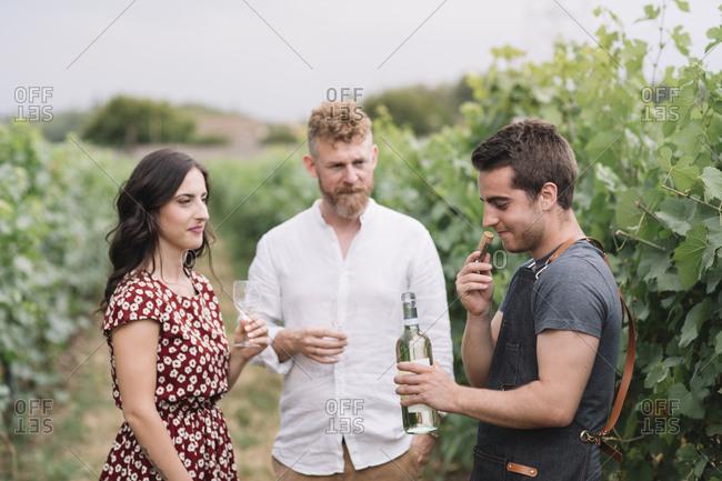 Sommelier smelling wine cork from freshly opened bottle in the vineyard