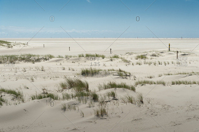 Germany- Schleswig-Holstein- Sankt Peter-Ording- sandy beach