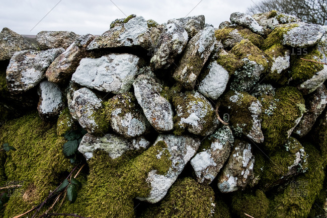 Close up of a dry stone wall with stones partially covered in moss.