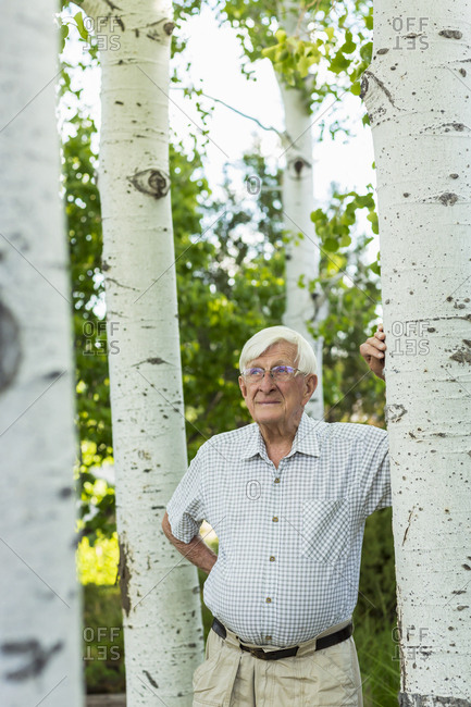 Senior man looking up at aspen trees
