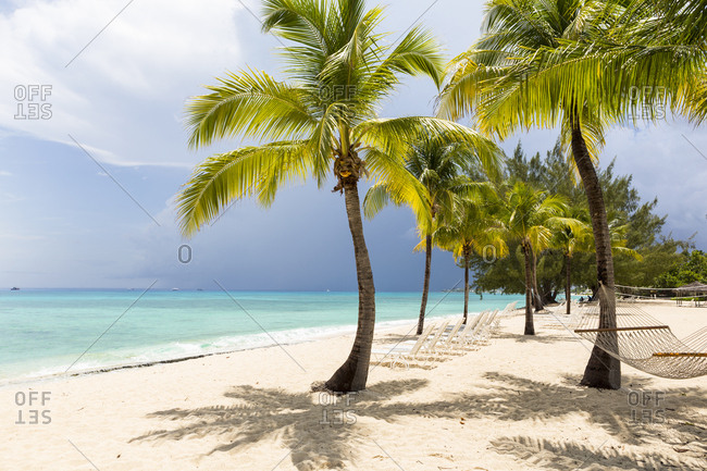 A white sand beach, turquoise sea and palm trees.