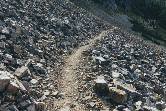 The Pacific Crest Trail near Hart's Pass in the Pasayten Wilderness, Okanogan-Wenatchee National Forest, about 35 miles from the Canadian border in the North Cascades in Washington.
