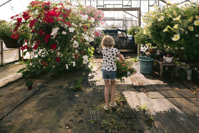 Rear view of girl carrying flowers in a greenhouse