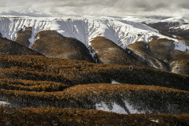 First snow fall in Autum Patagonia National park, Chile