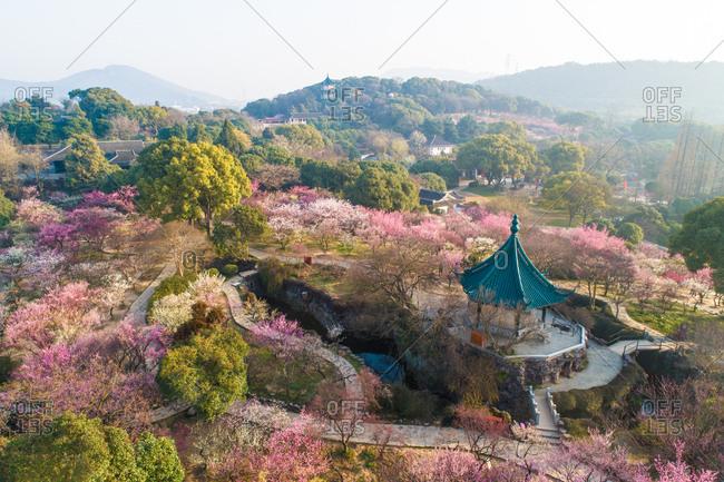 Jiangnan famous mei appreciation.itwuxi meiyuan