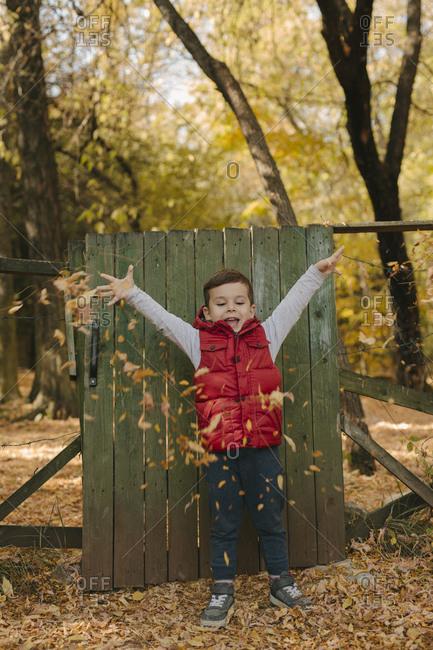 Boy throws autumn leaves onto the ground