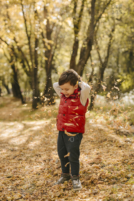 Boy throws autumn leaves into the air