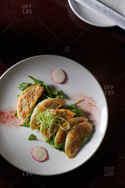 Pan seared pot stickers garnished with arugula, radish and green onions