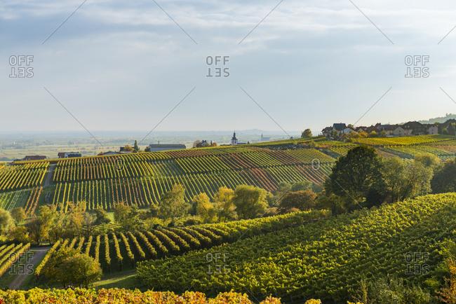Deutschland, Rheinland-Pfalz, Blick von der Villa Ludwigshhe nach Sden ber Weinberge