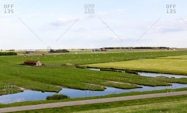 Landschaft hinter dem Deich, Siele und Schafe in Norddeutschland,