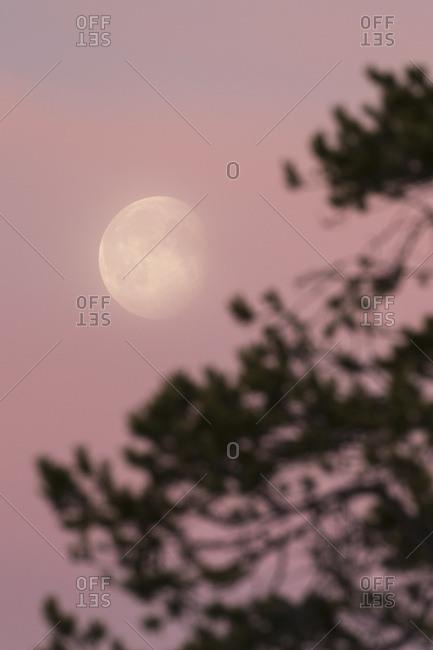 Mond am Morgenhimmel