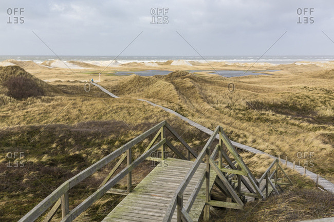 Germany, Northern Germany, Amrum, Bohlenweg through the dune landscape