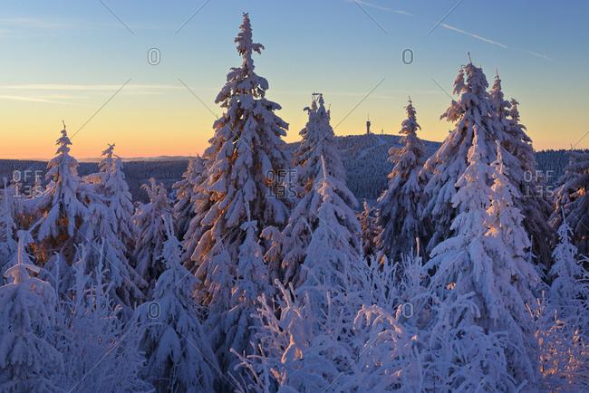 Deutschland, Sachsen, Erzgebirge, Oberwiesenthal, Sonnenaufgang am Fichtelberg, Fichten mit Schnee bedeckt, Winterlandschaft, Aussicht nach Tschechien zum Keilberg, tschechisch Klnovec