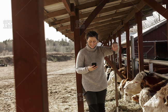 Woman in cowshed
