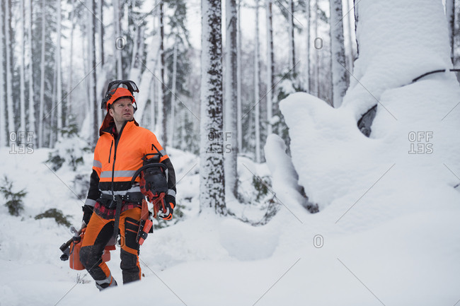 Lumberjack in forest