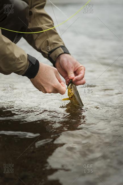Man holding caught fish