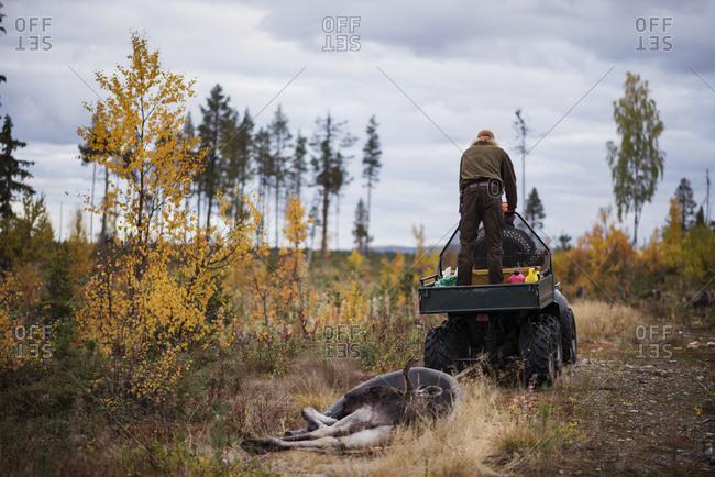 Vehicle pulling dead animal