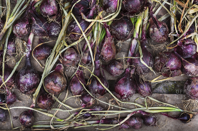 Red onions set on a table