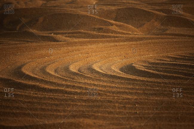 wheat fields and fresh air