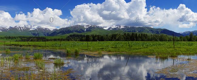 Xinjiang ili tang blah grassland scenic spot