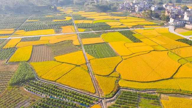 Guangxi guilin pastoral scenery - Offset