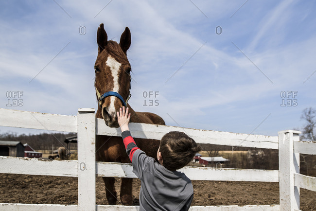 Young boy standing at fence reaching up to pet horse's nose