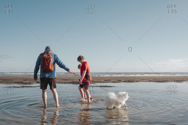 Family with small dog walking small dog on the beach