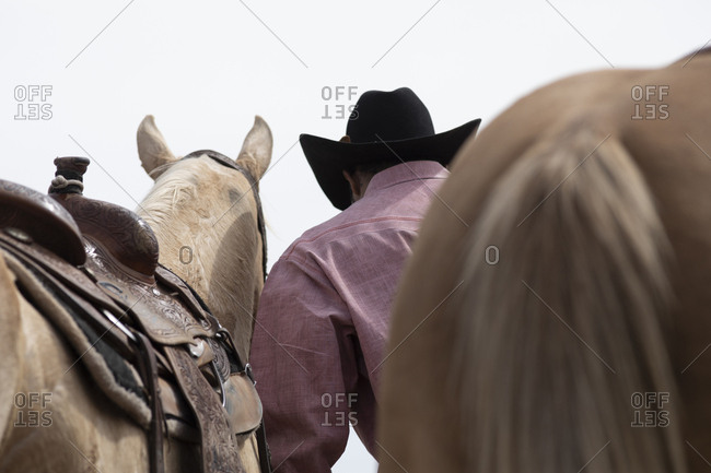 A cowboy tends to his horse backstage at the Arizona Black Rodeo