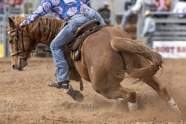 A horse kicks up dirt in the barrel racing event at the AZ black rodeo