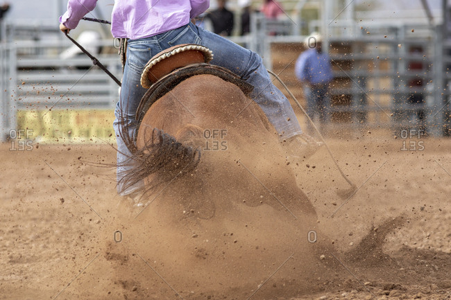 A horse kicks up dust during the barrel racing event at the rodeo