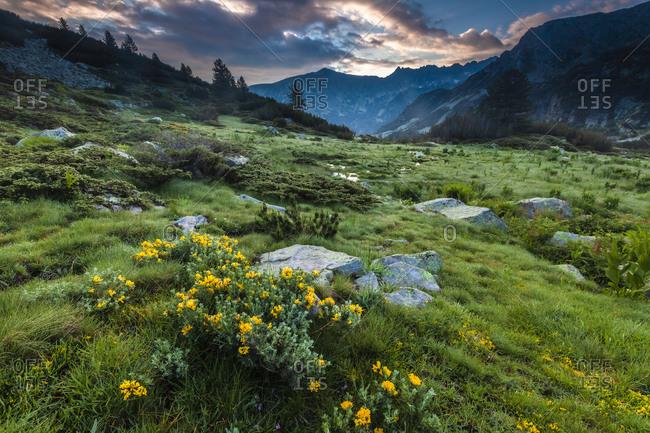 Landscape view of Pirin Mountains