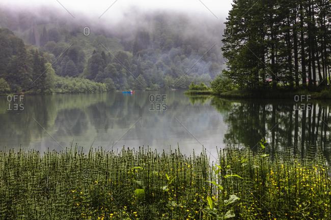 Misty Dark Lake - Offset Collection