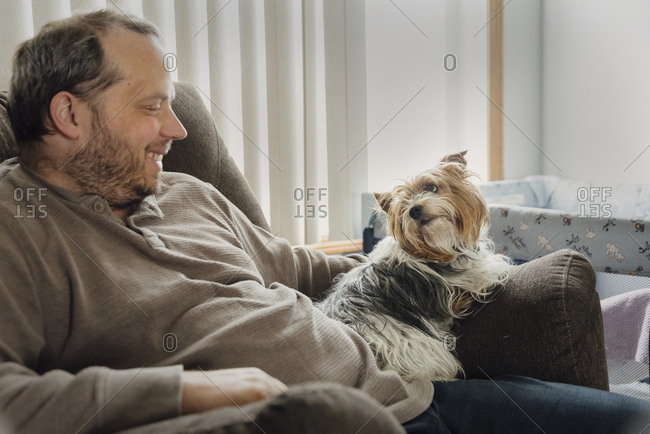 Yorkshire Terrier laying on arm of chair looking at her owner.