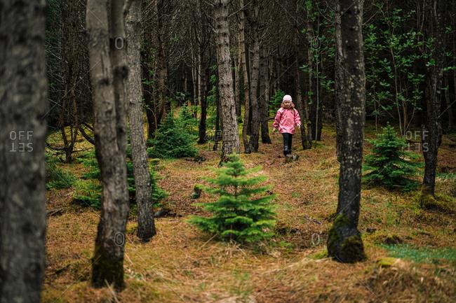 Curious girl wandering in Icelandic woods