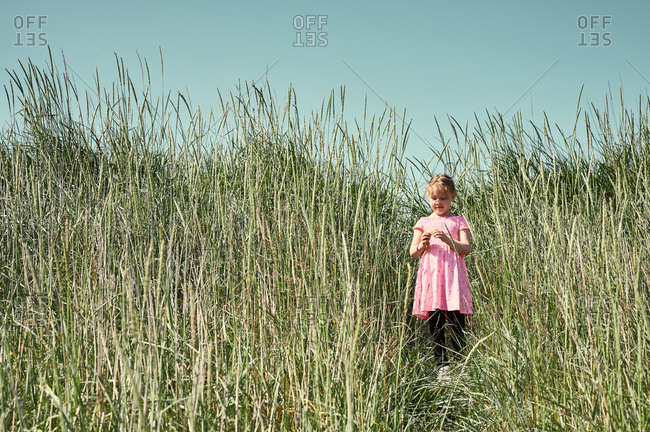 Sweet little girl on trail in Icelandic field
