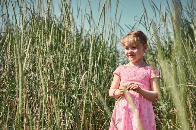 Smiling sunlit lovely girl among tall grass