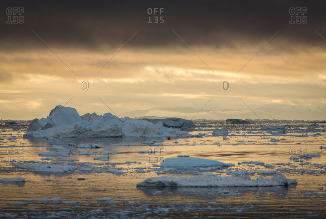 Icebergs floating off shore in the ocean at sunset